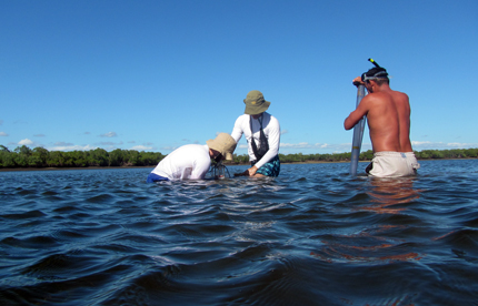 Researchers gathering soil samples from under water